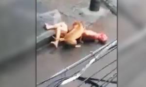 Σκληρές εικόνες: Πίτμπουλ επιτέθηκε σε ημίγυμνο άνδρα στη μέση του δρόμου (video)