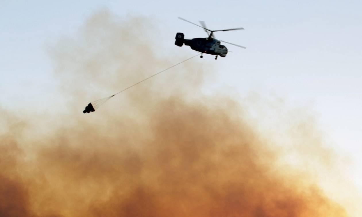 Φωτιές σε Αμφιλοχία και Μεσσηνία