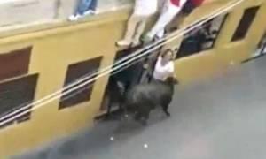 ΠΡΟΣΟΧΗ ΣΚΛΗΡΕΣ ΕΙΚΟΝΕΣ: Ταύρος σκοτώνει γυναίκα μπροστά στον άντρα και το παιδί της