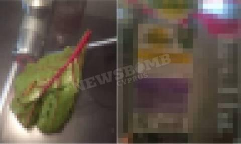 Αγοράζεις έτοιμες σαλάτες; Όταν δεις τι βρέθηκε σε κυπριακό supermarket θα το ξανασκεφτείς! (photo)