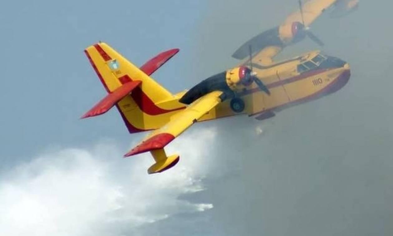 ΤΩΡΑ: Πυρκαγιά στην Καμάριζα Λαυρίου
