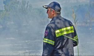 Υπό έλεγχο οι πυρκαγιές σε Μασουραίικα Αχαΐας, Ουρανούπολη και Πολύγυρο