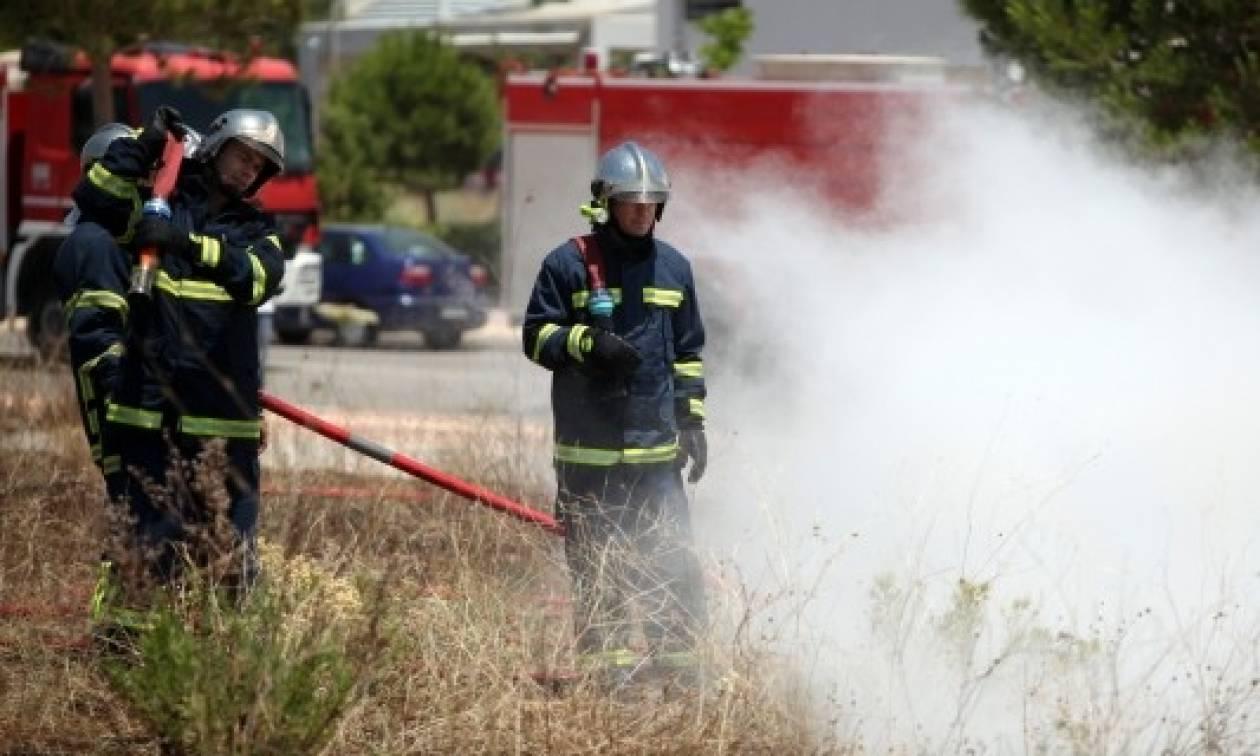 Συναγερμός στην Μάνδρα Αττικής για πυρκαγιά