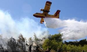 Υπό έλεγχο τα μέτωπα σε Κέρκυρα, Κεφαλονιά, φωτιές σε Θήβα και Τζιά