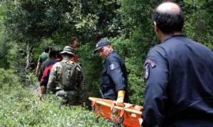 Ιωάννινα: Μοιραία στάθηκε η βόλτα στο βουνό για έναν 55χρονο