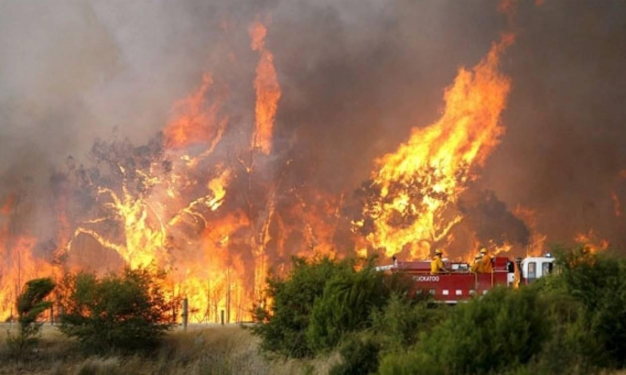 Ηράκλειο:Φωτιά στη Γεργέρη