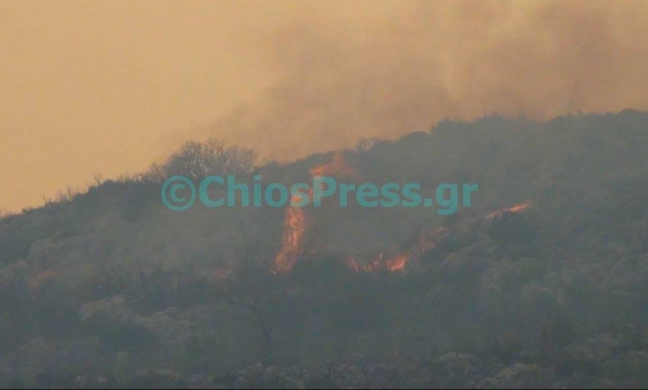 Μεγάλη φωτιά στη Χίο - Εκκενώθηκαν χωριά (photos - videos)