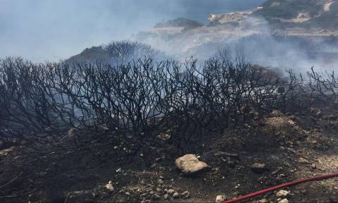 Έσβησε η φωτιά στη Γλυφάδα (vid + pics)
