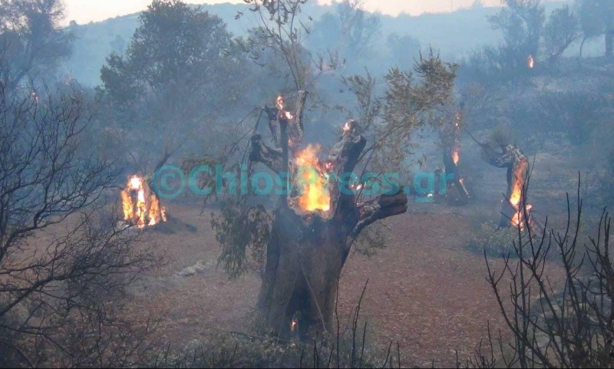 Φωτιά Χίος: Μέχρι την Κρήτη έφτασαν οι καπνοί (photo)