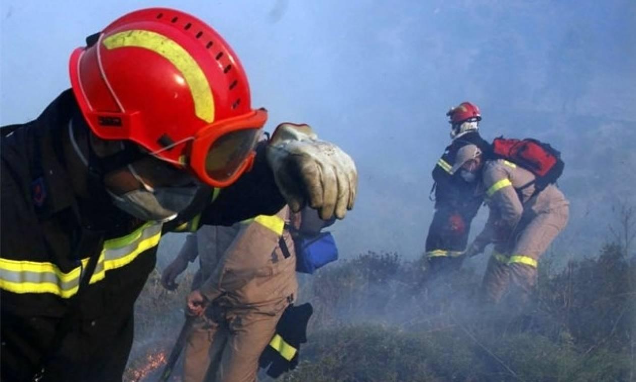 Ελευσίνα: Σύλληψη 35χρονου για την πυρκαγιά στην περιοχή Ευταξία
