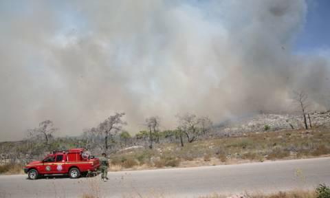 Φωτιά Χίος: Σε ύφεση τα πύρινα μέτωπα - Φόβοι για αναζωπυρώσεις (pics)
