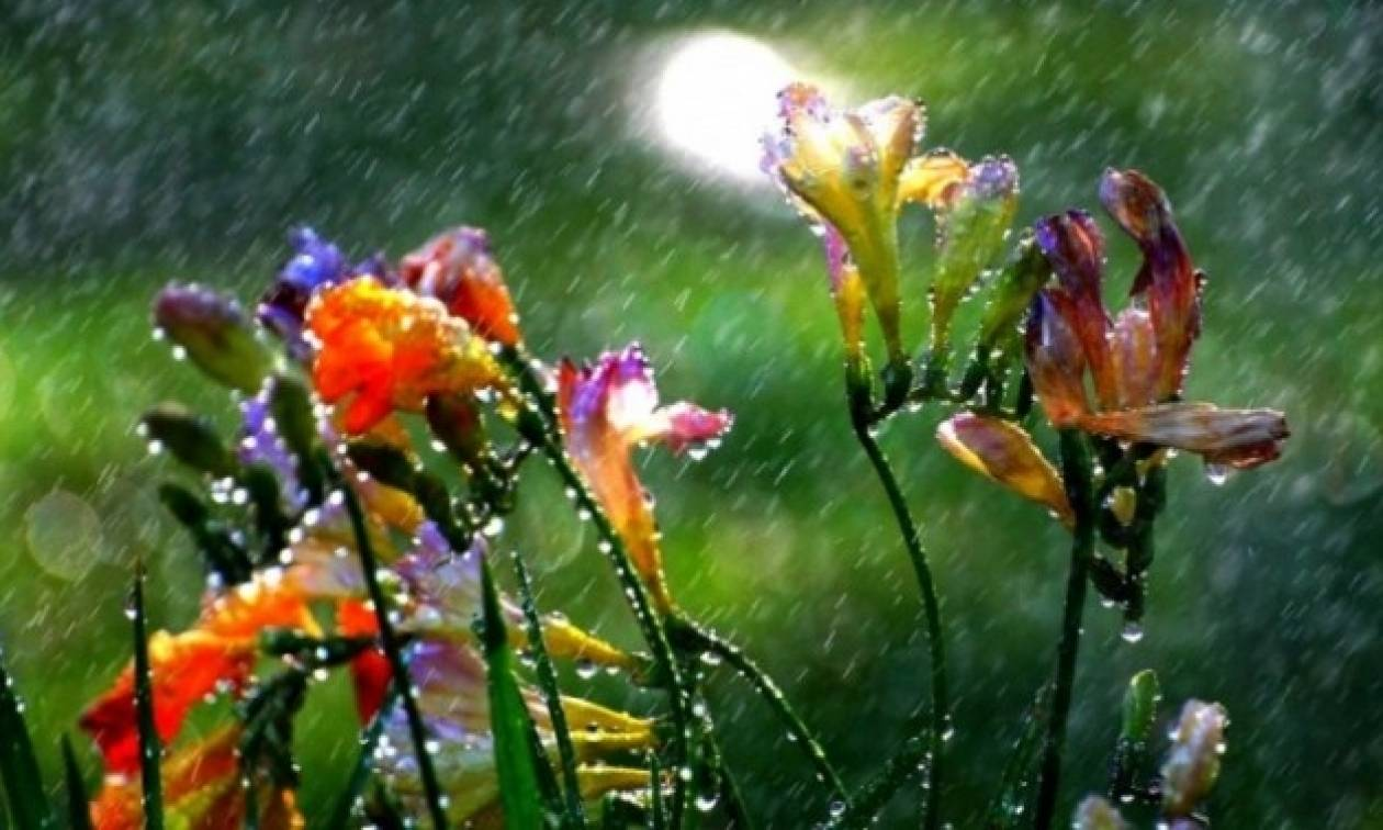 Ο καιρός την Τετάρτη (27/7) - Δείτε πού θα βρέξει