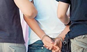 Σητεία: Συνελήφθη 25χρονος για καλλιέργεια κάνναβης