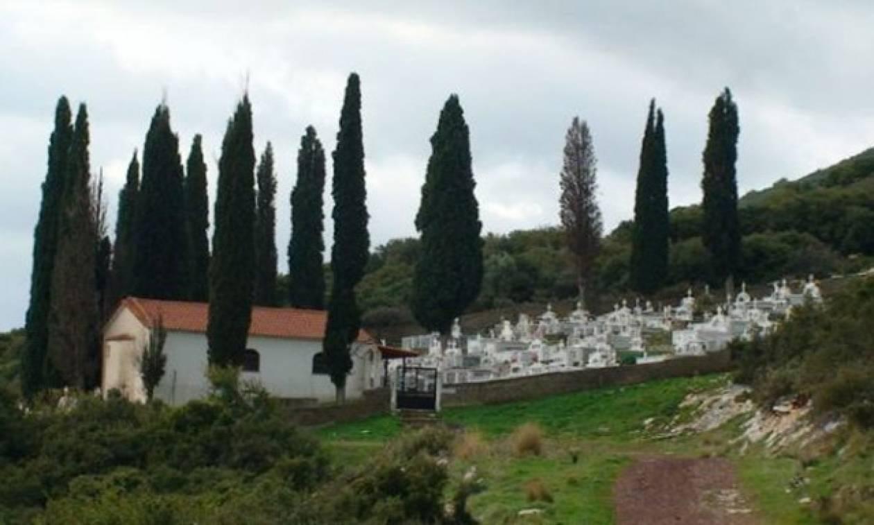 Αποκλείεται να το γνώριζες: Για ποιον λόγο φυτεύουν κυπαρίσσια στα νεκροταφεία;