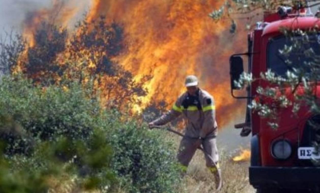 Συναγερμός στην Πυροσβεστική για μεγάλη φωτιά κοντά στην ΒΙ.ΠΕ. Πάτρας