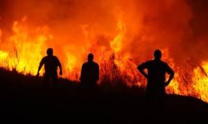 Πύρινη κόλαση στη βόρεια Εύβοια: Στάχτη χιλιάδες στρέμματα πευκοδάσους (pics)