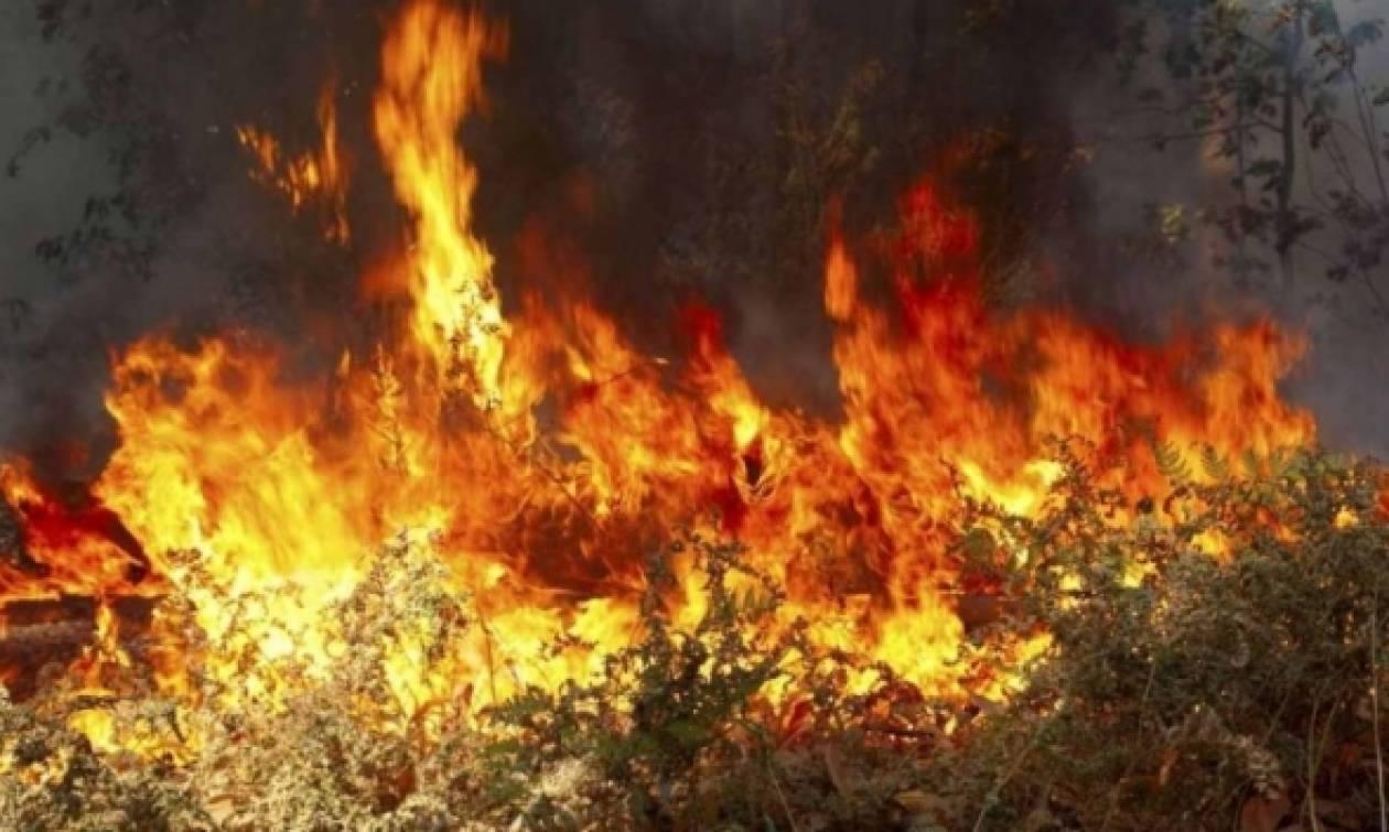 Σε ύφεση η μεγάλη φωτιά στο Ρέθυμνο