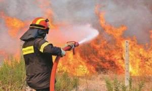 Φωτιά στην Εγνατία Οδό