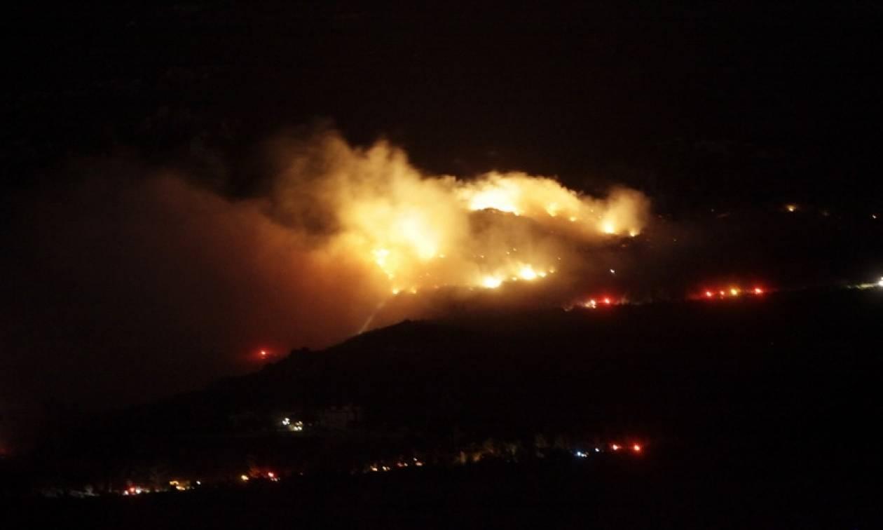 Φωτιά Εύβοια: Ενισχύονται οι δυνάμεις πυρόσβεσης με ερπυστριοφόρα μηχανήματα