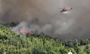 Φωτιά Εύβοια: Κρανίου Τόπος... (pics)