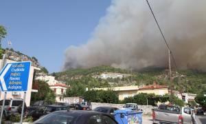 Εύβοια: Συμφέροντα πίσω απο την φωτιά «βλέπουν» οικολογικές οργανώσεις
