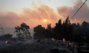 Φωτιά Εύβοια: Ανησυχία για το ανατολικό μέτωπο που κατευθύνεται σε οικισμό - Υπό έλεγχο το δυτικό