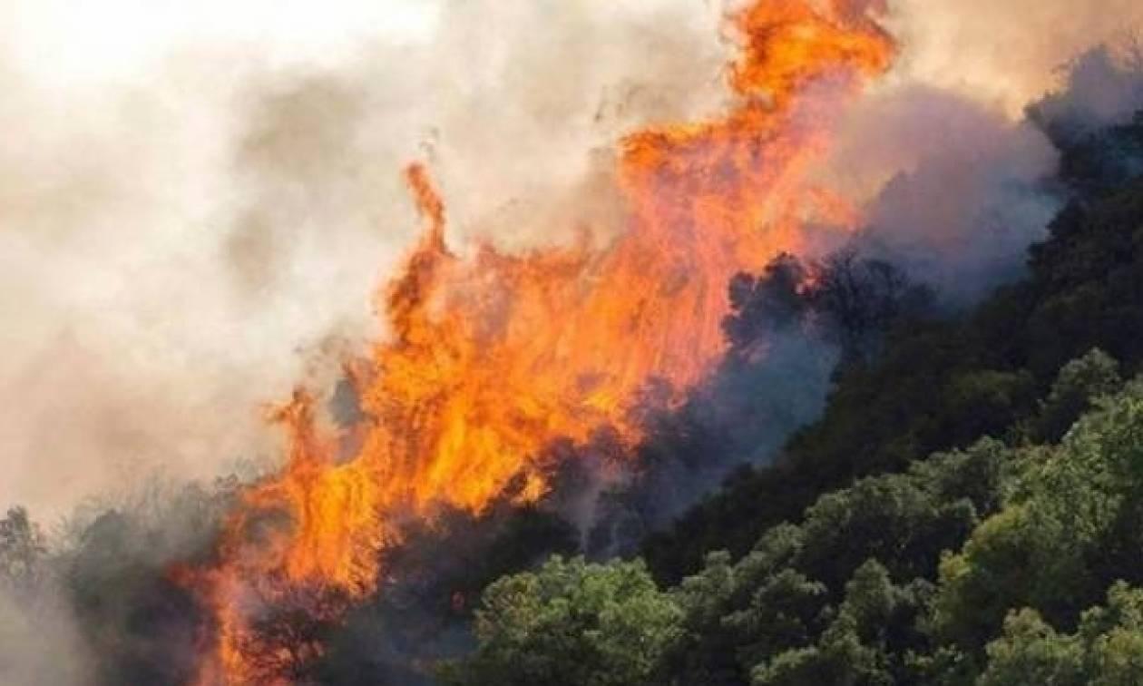 Προσοχή: Σε αυτές τις περιοχές είναι υψηλός ο κίνδυνος πυρκαγιάς