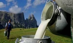 Υποχρεωτική η αναγραφή προέλευσης γάλακτος στο γάλα και τα γαλακτοκομικά