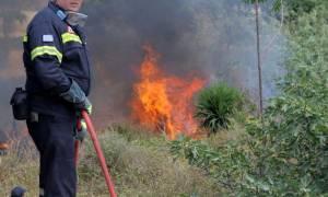 Φωτιά στην Αργολίδα: Εξακολουθεί να καίει το πύρινο μέτωπο στο Κρανίδι
