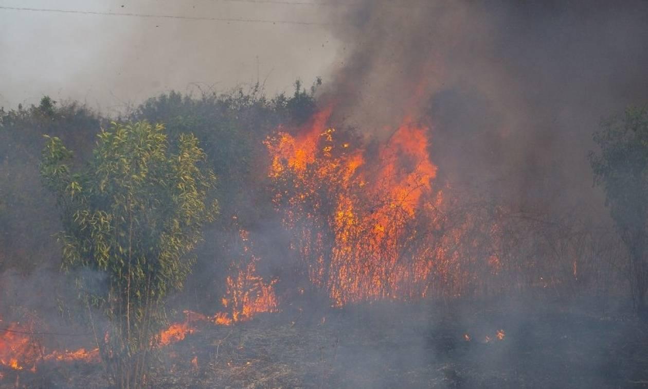 Φωτιά μαίνεται στη Δράμα