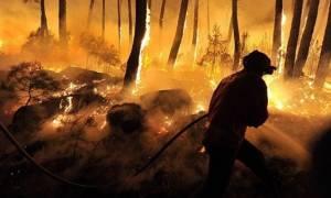 Ενισχύθηκαν οι δασικές πυρκαγιές στη βόρεια Πορτογαλία
