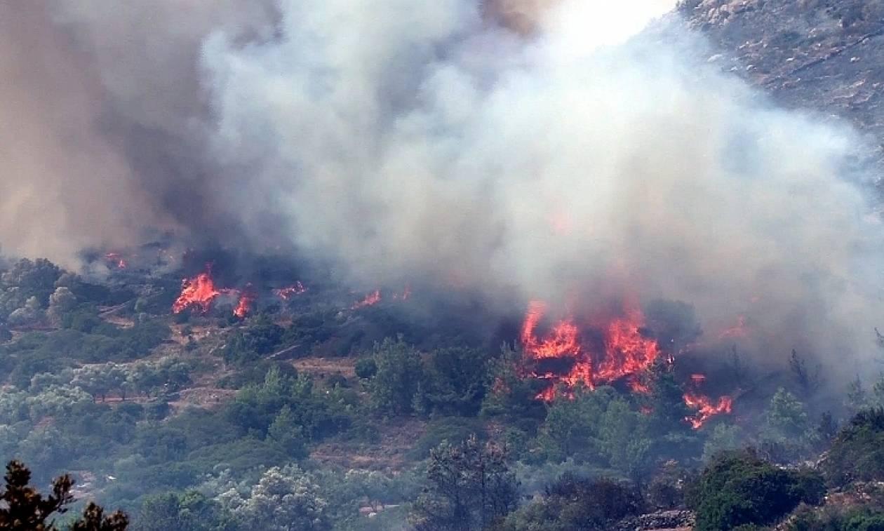 Υπό μερικό έλεγχο η φωτιά στα Μέγαρα Αττικής