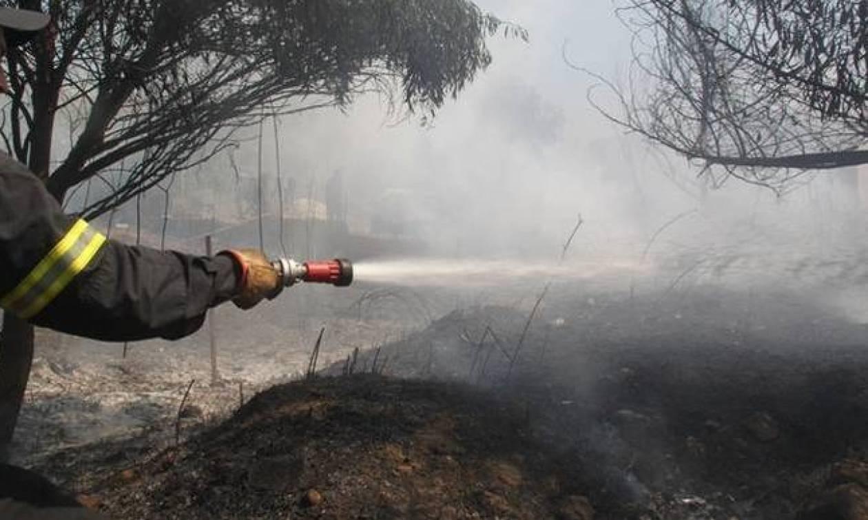 Υπό έλεγχο η πυρκαγιά στην Κατούνα Αιτωλοακαρνανίας