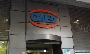 ΟΑΕΔ: Στις 17 Αυγούστου οι προσωρινοί πίνακες κατάταξης για 3.737 θέσεις εργασίας