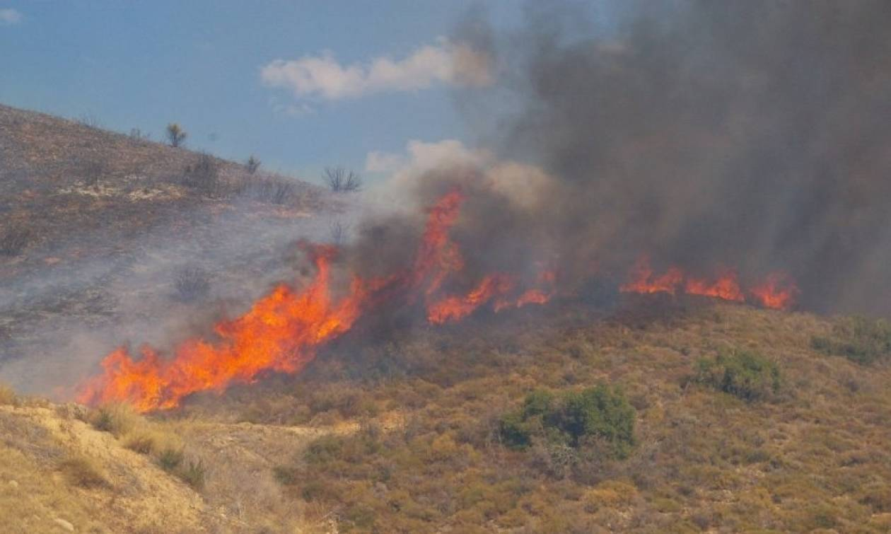 Φωτιές μαίνονται σε Λακωνία και Μέγαρα