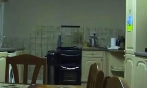 Η κουζίνα έγινε... γης μαδιάμ για έναν ανατριχιαστικό λόγο (video)
