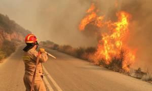 Μάχη με τις φλόγες στην Εύβοια: Κάηκαν σπίτια - Εκκενώθηκε οικισμός (pics&vid)