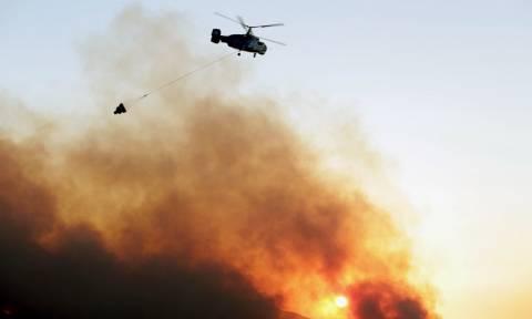 Πολύ υψηλός ο κίνδυνος πυρκαγιάς την Κυριακή (14/08)