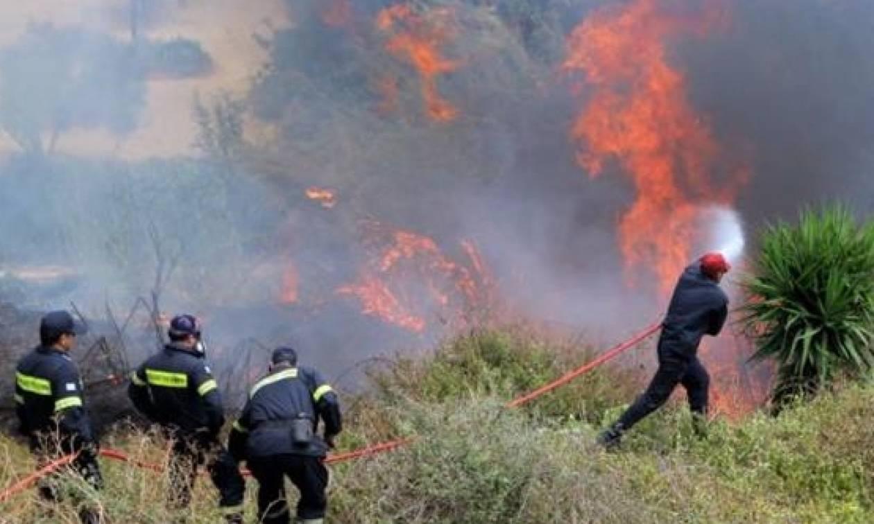 Αποτέλεσμα εικόνας για Φωτιά στα Καλύβια Αττικής
