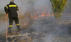 Θρήνος για τον 49χρονο πυροσβέστη που «έσβησε» εν ώρα καθήκοντος