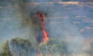 Υπό έλεγχο οι φωτιές σε Καλύβια, Τζια, Εύβοια και Λιβαδειά