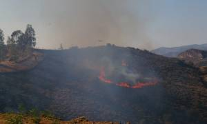 Υπό μερικό έλεγχο οι πυρκαγιές στο νομό Χανίων