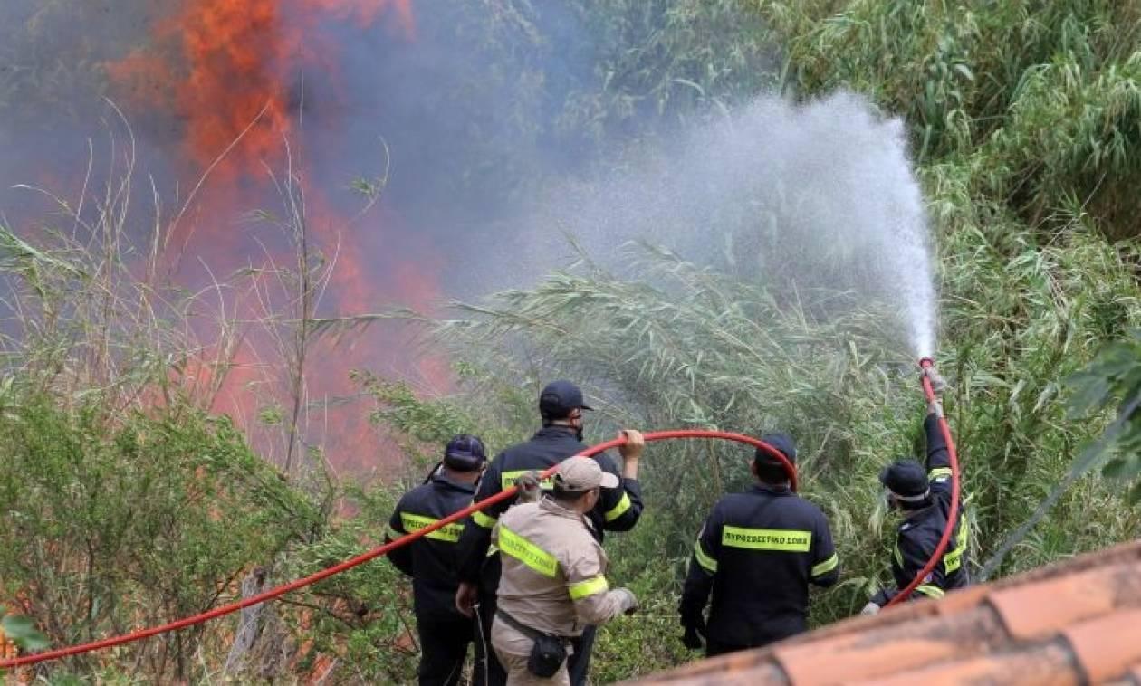 Πυρκαγιά σε εξέλιξη στην Κάρυστο