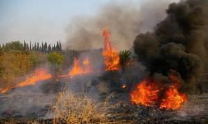 Φωτιά ξέσπασε στα Πηγάδια Μεσσηνίας