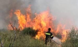 Φωτιά στο Κιλελέρ της Λάρισας