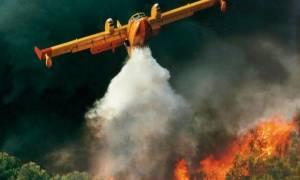 Συναγερμός για φωτιά στη Μάνη