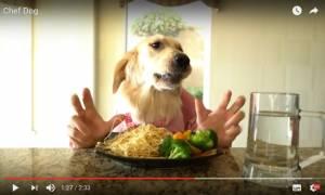 Viral: Είναι αυτό ένα από τα πιο παράξενα βίντεο που έχετε δει ποτέ;