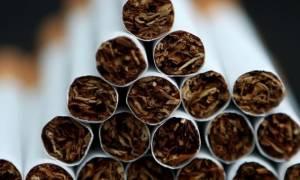 Κατάσχεσεις - μαμούθ λαθραίων τσιγάρων από τις τελωνειακές υπηρεσίες της ΓΓΔΕ