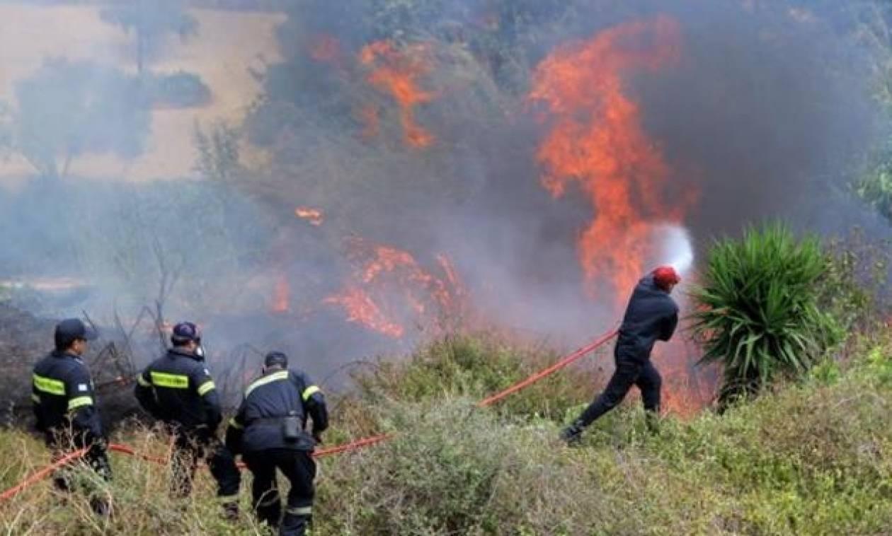 Συναγερμός για πυρκαγιά στη Γαλιά Μεσαράς