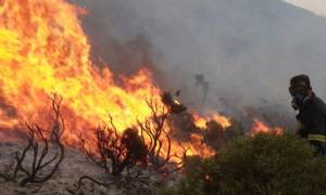 Υπό μερικό έλεγχο η φωτιά στη Νεμέα